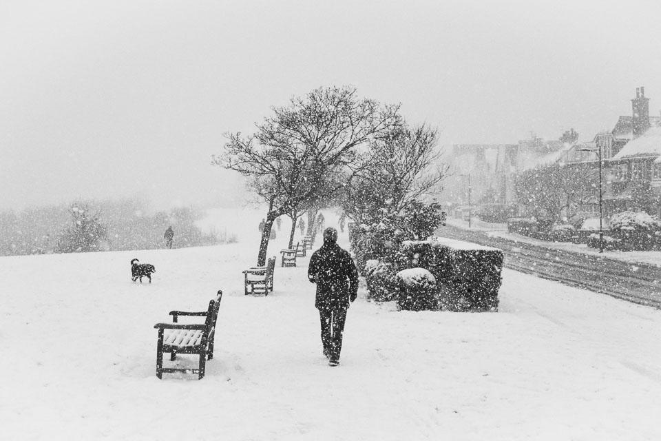 Cliff-Gardens-snow_v1.jpg