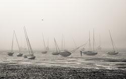 Misty-masts.jpg