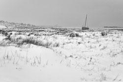Leigh-Marsh-snow.jpg